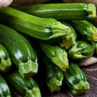 Zucchina-img-14